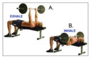 تنفس در هنگام ورزش